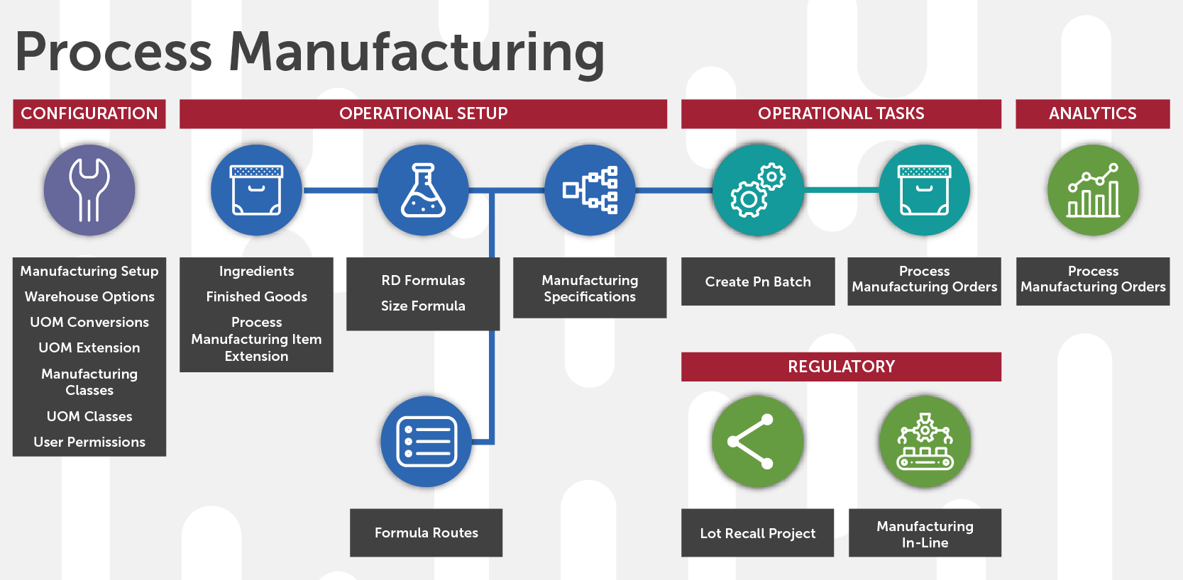 Infor CloudSuite Industrial for Process