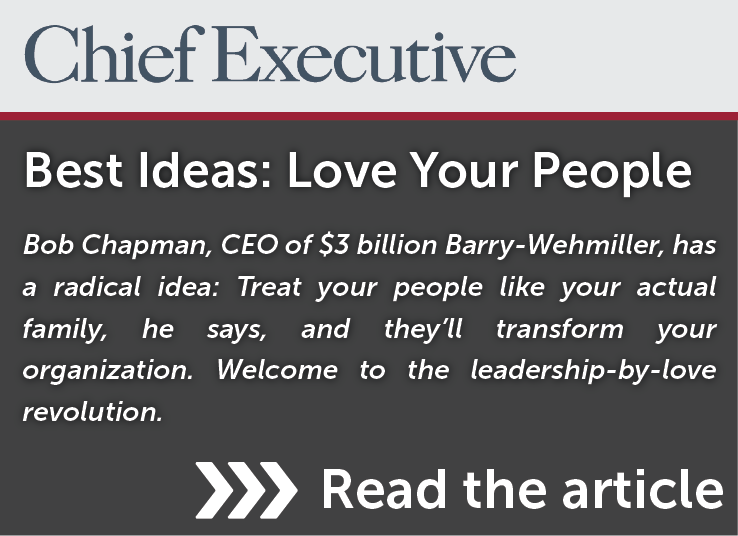 Chief Executive Article